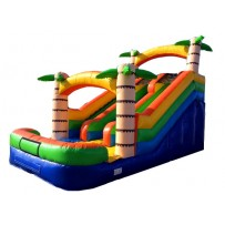 15ft Adventure Island Dual Lane Slide