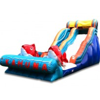 19ft Big Kahuna Wet/Dry Slide