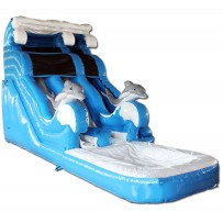 18ft Dolphin Dual Lane Water Slide