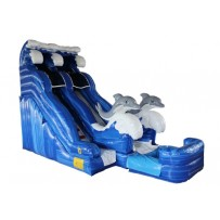 18ft Dolphin Dry Slide