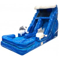 18ft Dolphin Wet/Dry Slide