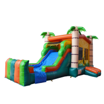 (B) Jungle Gym Bounce Slide combo (Wet or Dry)