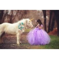 (1) Pony Rides/Petting Zoo